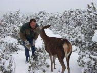 Bambi besando a Carlos