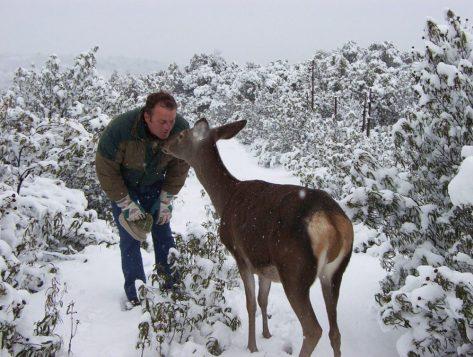 carlos-y-bambi2