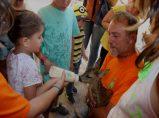 Todos querían dar bibe a Bambi