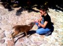 A Bego le encanta dar bibe a Mufin