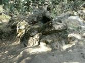 Bajo el túmulo, se deja ver la tumba celta